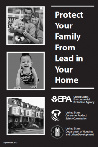Cover of Lead Info Brochure